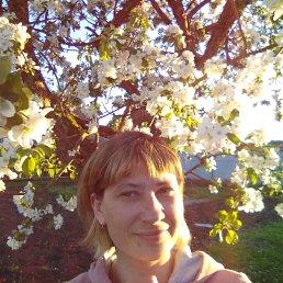 Ирина, 33 года, Тверь