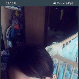 Алена, 27 лет, Новосибирск