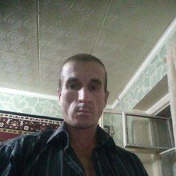 Олег, Волгодонск, 36 лет