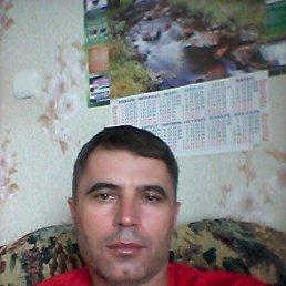 Юрий, 43 года, Ставрополь