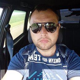 Александр, 29 лет, Белгород