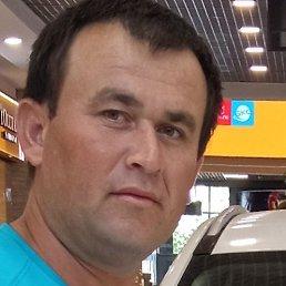 Бек, Нижний Новгород, 28 лет