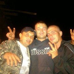 Илья, 29 лет, Томск