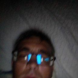 Евгений, 37 лет, Тында