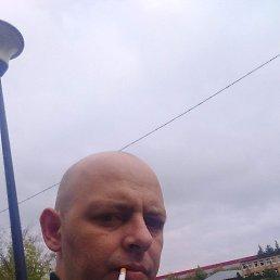 Максим, 39 лет, Электросталь