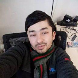 Антон, 32 года, Краснодар