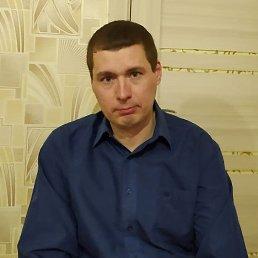 Дмитрий, 38 лет, Волгодонск