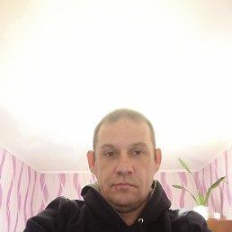 Дмитрий, 44 года, Астрахань