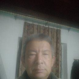 Бахрам, 53 года, Бишкек