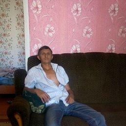 Андрей, 37 лет, Сальск